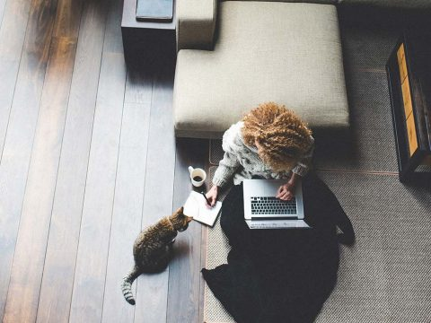 Lady_Cat_Laptop_Home